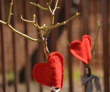 В Могилеве в ноябре приступят к кронированию деревьев